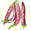 red chillies watercolour, sense of sight
