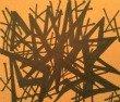 anger orange 110x94